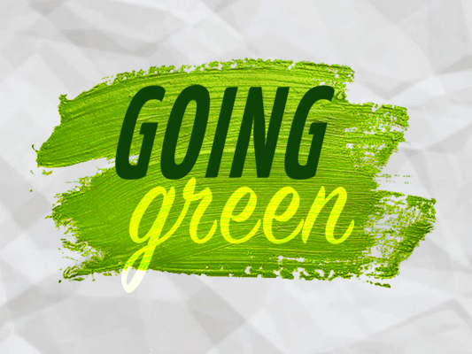 Inseta going green